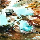 Swirls by Anil Nene