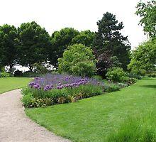 A Pretty Path - Hyde Hall, Essex by MidnightMelody