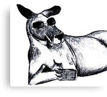 Cool Kangaroo Canvas Print