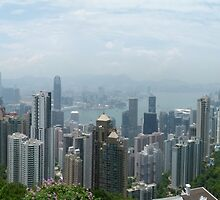 Hong Kong Panorama by Trish Meyer