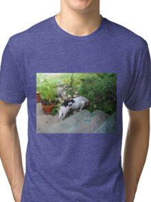 pokin around Tri-blend T-Shirt