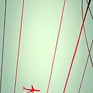 air line by PJ Ryan