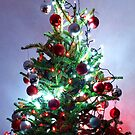 Christmas is coming ! by John Dalkin