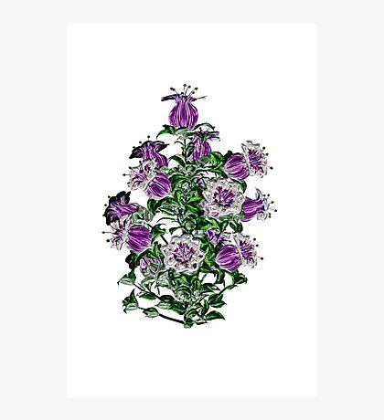 Purple Metalica Photographic Print