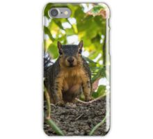 Do you have something for me? iPhone Case/Skin