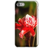 Red Flower - Macro Photography iPhone Case/Skin