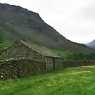 Farmer's barn at Grasmere, Cumbria, UK by GeorgeOne