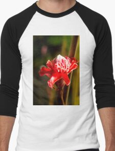Red Flower - Macro Photography Men's Baseball ¾ T-Shirt