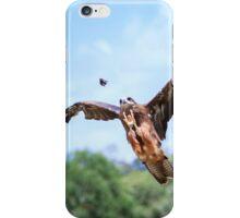 Black Kite Hunting iPhone Case/Skin