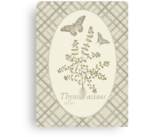 Butterflies and Thyme (natural) Canvas Print