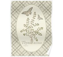 Butterflies and Thyme (natural) Poster