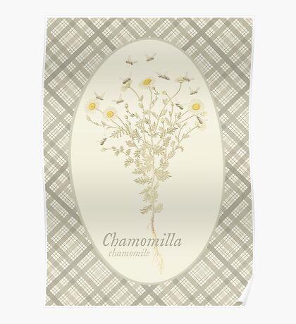 Chamomile Bees (natural) Poster