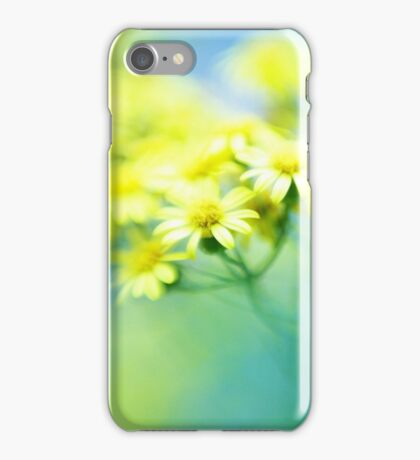 Abendrot iPhone Case/Skin