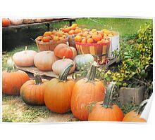 Pick Your Pumpkin Poster