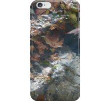 Autumn water iPhone Case/Skin