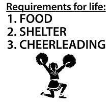 Food Shelter Cheerleading Photographic Print