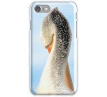 Classical iPhone Case/Skin