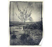 Bleached Artsy Tree Scene Poster