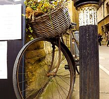 Old Timey Bike Oxford by Jennifer Erin Latham