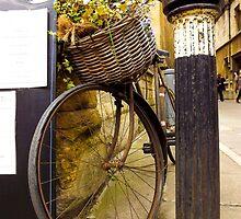 Old Timey Bike Oxford by Jennifer Erin Latham
