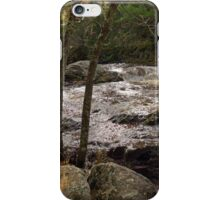 Wisconsin State Park : Amnicon 1 iPhone Case/Skin