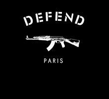 Defend Paris by spiceboy