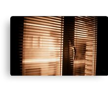 Appartment window blind sepia black and white film silver gelatin analog photograph Canvas Print