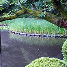 Kyoto: Timeless by Sue Ballyn