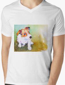 Rusty Mens V-Neck T-Shirt