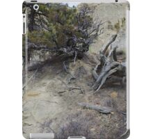 Twisted Dead Wood iPad Case/Skin