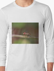 Macro of Hoverfly Warming in the Sun Long Sleeve T-Shirt