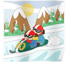 Winter Sports: Bobsleigh Poster