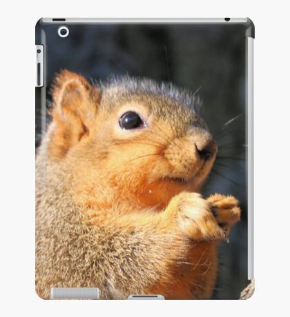 Winter fluff iPad Case/Skin
