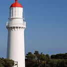 Cape Schank Lighthouse by DavidsArt