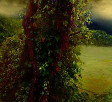 Adorned in Autumn by RC deWinter