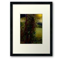 Adorned in Autumn Framed Print