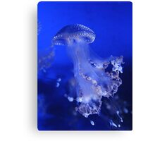 The Beauty of A Blue Jellyfish Canvas Print