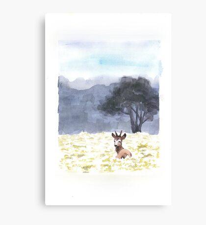 Deer in meadows Canvas Print
