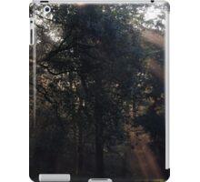 Tatton North Side iPad Case/Skin