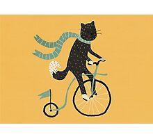 mrs. cat Photographic Print