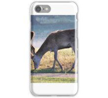 More Deer at Tatton iPhone Case/Skin
