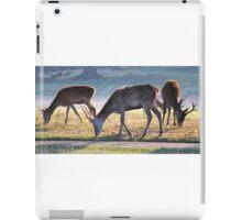 More Deer at Tatton iPad Case/Skin