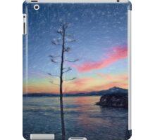 East Brother Island iPad Case/Skin
