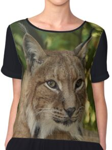 Beautiful , Majestic, Wild Lynx Chiffon Top