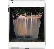 Autumn in Tatton  iPad Case/Skin