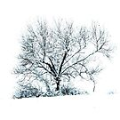 White Out by AngieDavies