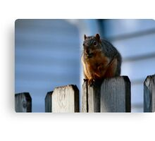 I'm undertall...not over weight.  Canvas Print