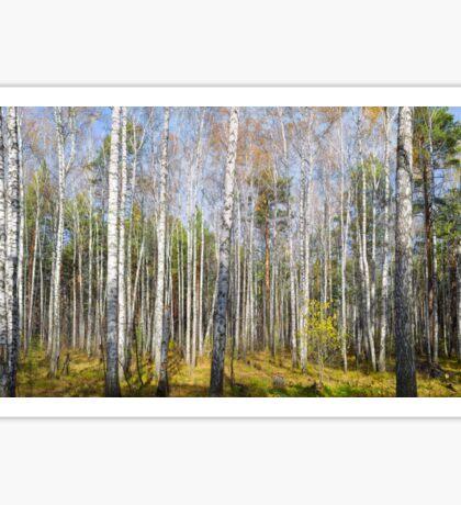 Fall forest Sticker