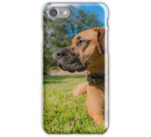 Guardian of the Front Yard iPhone Case/Skin