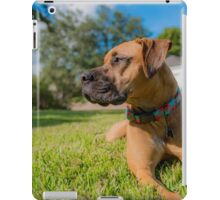 Guardian of the Front Yard iPad Case/Skin